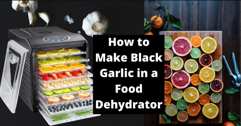 How to Make Black Garlic in a Food Dehydrator